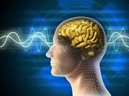 philosophiques,spirituelles,pensées,conscience,fusion,cerveau,kraly,écrivain,chemins existants,réflexion,comprendre,savoir,connaître