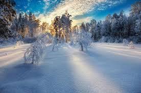 temps,beauté,paysage,poète,morrison,paradis,blanc,lotus,poésie,réflexion,comprendre,savoir,connaître