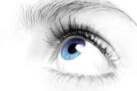 darwin,l'oeil,thèse,darwinisme,explications,perfection,sélection,naturelle,évolution,pour,contre,humain,réflexions,comprendre,savoir,connaître