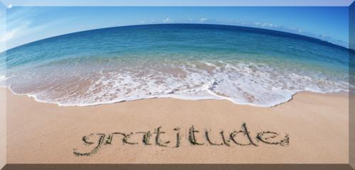 gratitude,cri,coeur,merci,bienveillance,expérience,partage,réflexion,comprendre,savoir,connaître