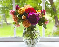 fleurs fraîches,conséquences,feng shui,too,trédaniel, espèces,propreté,réflexion,comprendre,savoir,connaître
