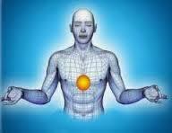 plexus,nerfs,rôle,solaire,corps,humain,organes,avantages,sens,organiques,action,mouvements,réflexion,comprendre,savoir,connaître