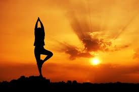 méditation,occidentale,chemin,apprendre,réflexions,comprendre,savoir,connaître,méthodes,amour