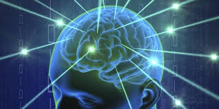 cerveau,apprentissage,nürnberger,recherche,découvertes,capacités,adaptation,zones,expériences,écoliers,livre,pensées positives,réflexions,comprendre,savoir,connaître