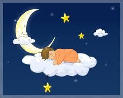 dickinson,poétesse,américaine,poésie,secret,rêve,sommeil,quatrains,recueil,réflexions,comprendre,savoir,connaître