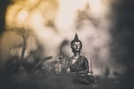 sagesse,âge,patience,pensée,philosophe,réflexion,comprendre,savoir,connaître