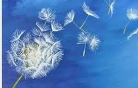sagesse,conscience,pensée,philosophique,spirituelle,kraly,écrivain,naissance,belle,réflexion,comprendre,savoir,connaître