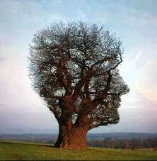 magnétisme,bien-être,vital,subtil,énergies,radiesthologie,cosmo,tellurisme,réflexions,comprendre,savoir